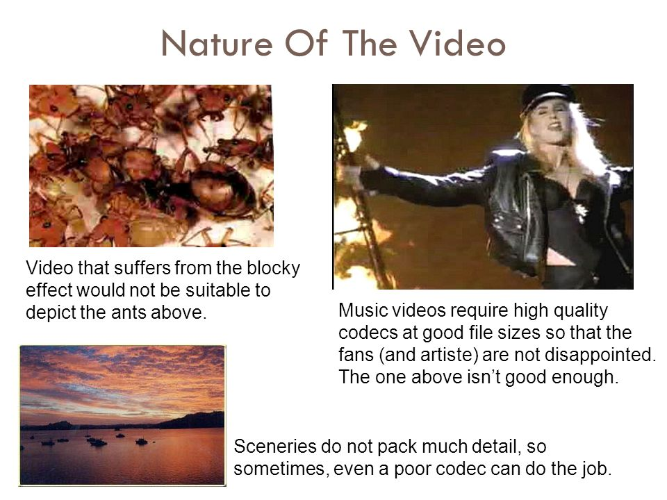 Nature Of The Video Video that suffers from the blocky effect would not be suitable to depict the ants above. Music videos require high quality codecs