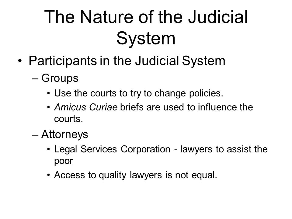 The Nature of the Judicial System Participants in the Judicial System –Groups Use the courts to try to change policies.