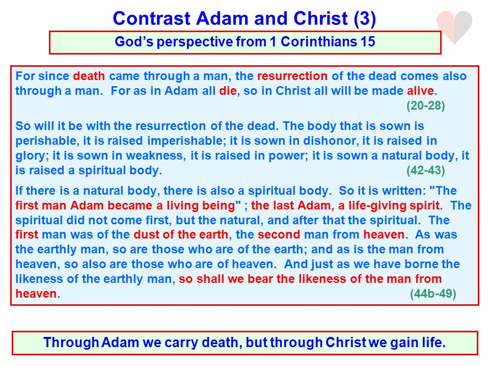 For since death came through a man, the resurrection of the dead comes also through a man.