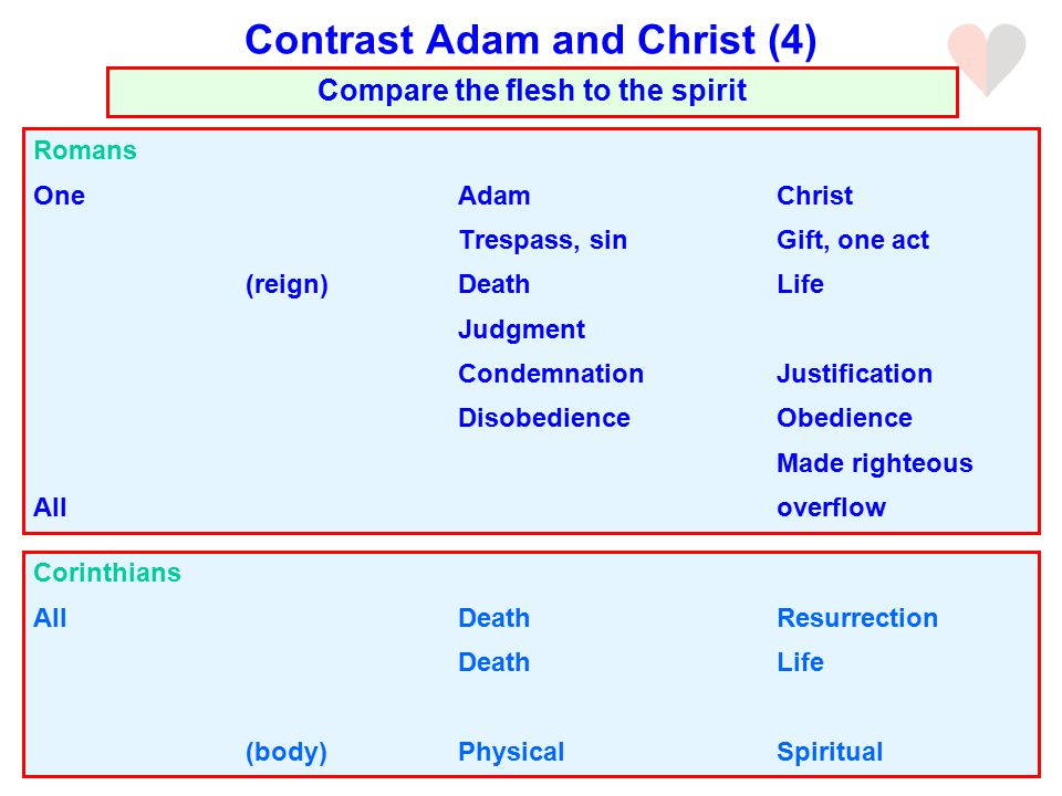 Romans OneAdamChrist Trespass, sinGift, one act (reign)DeathLife Judgment CondemnationJustification DisobedienceObedience Made righteous Alloverflow Compare the flesh to the spirit Contrast Adam and Christ (4) Corinthians AllDeathResurrection DeathLife (body)PhysicalSpiritual