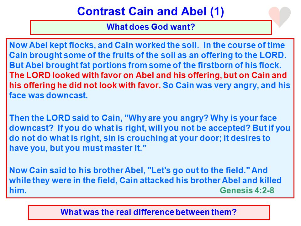Now Abel kept flocks, and Cain worked the soil.