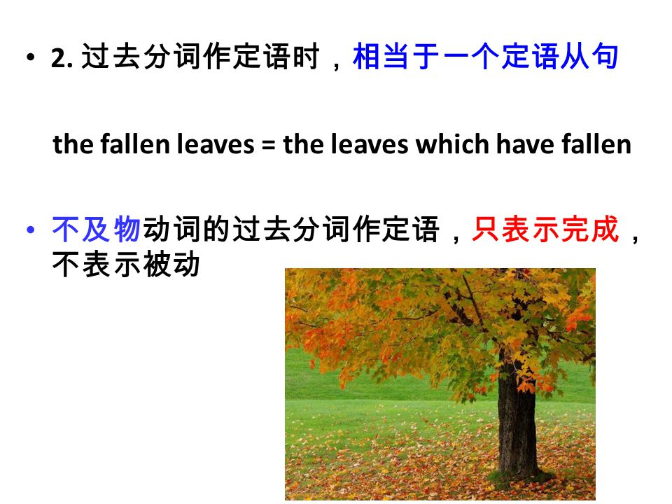 2. 过去分词作定语时,相当于一个定语从句 the fallen leaves = the leaves which have fallen 不及物动词的过去分词作定语,只表示完成, 不表示被动