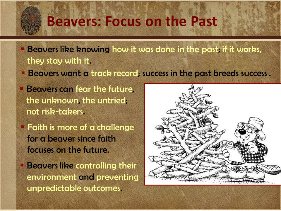 Beavers: Focus on the Past  Beavers like knowing how it was done in the past; if it works, they stay with it.  Beavers can fear the future, the unkn