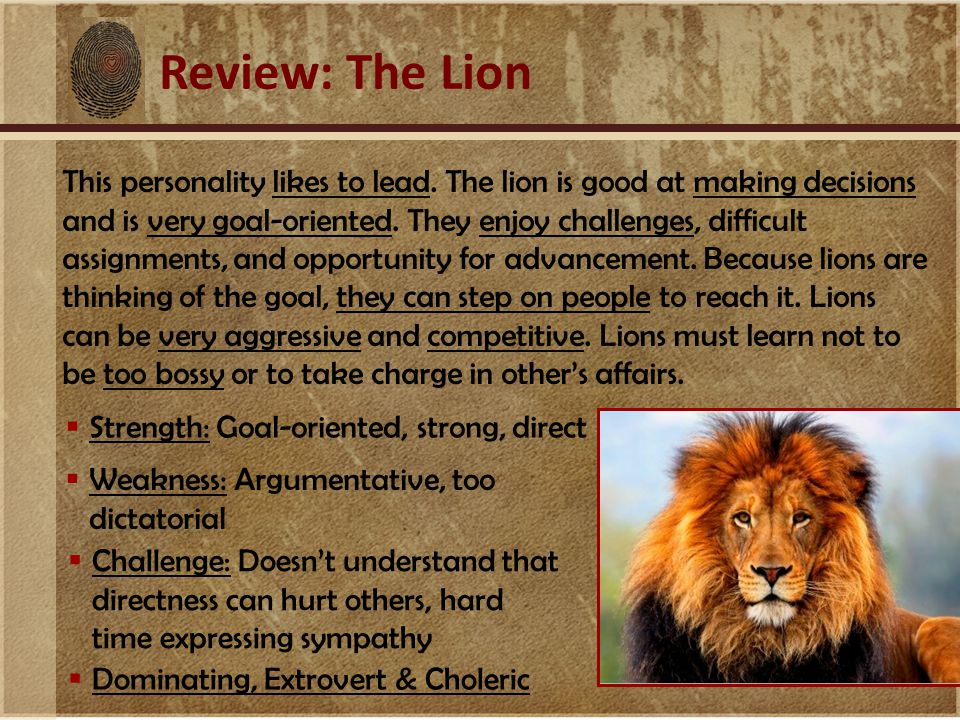 Review: The Lion This personality likes to lead. The lion is good at making decisions and is very goal-oriented. They enjoy challenges, difficult assi
