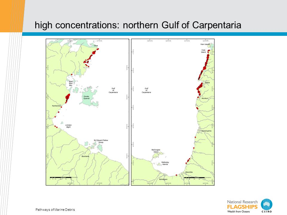 high concentrations: northern Gulf of Carpentaria