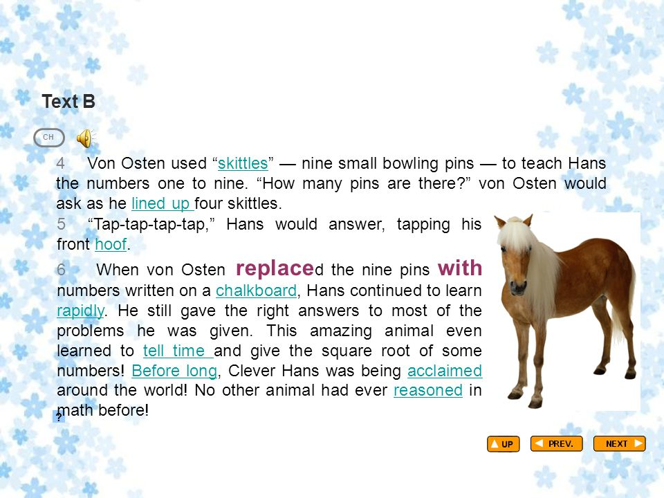 """Text B TextB_P2 ? CH 4 Von Osten used """"skittles"""" — nine small bowling pins — to teach Hans the numbers one to nine. """"How many pins are there?"""" von Ost"""