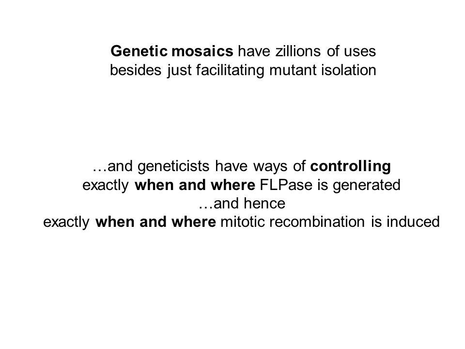 Genetic mosaics have zillions of uses besides just facilitating mutant isolation …and geneticists have ways of controlling exactly when and where FLPase is generated …and hence exactly when and where mitotic recombination is induced