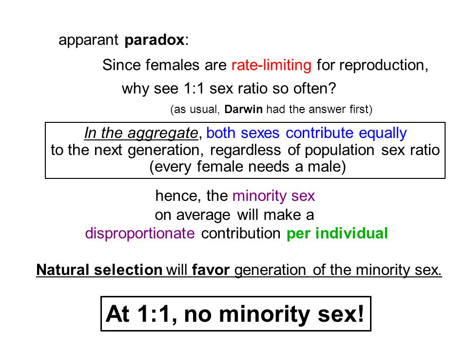apparant paradox: Since females are rate-limiting for reproduction, why see 1:1 sex ratio so often.