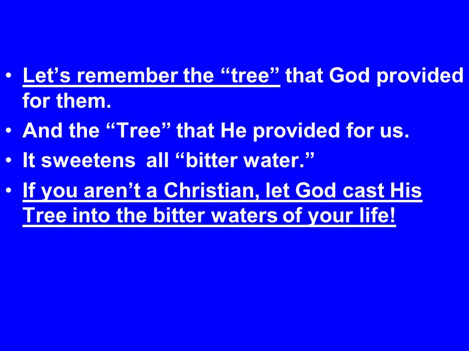 Let's remember the tree that God provided for them.