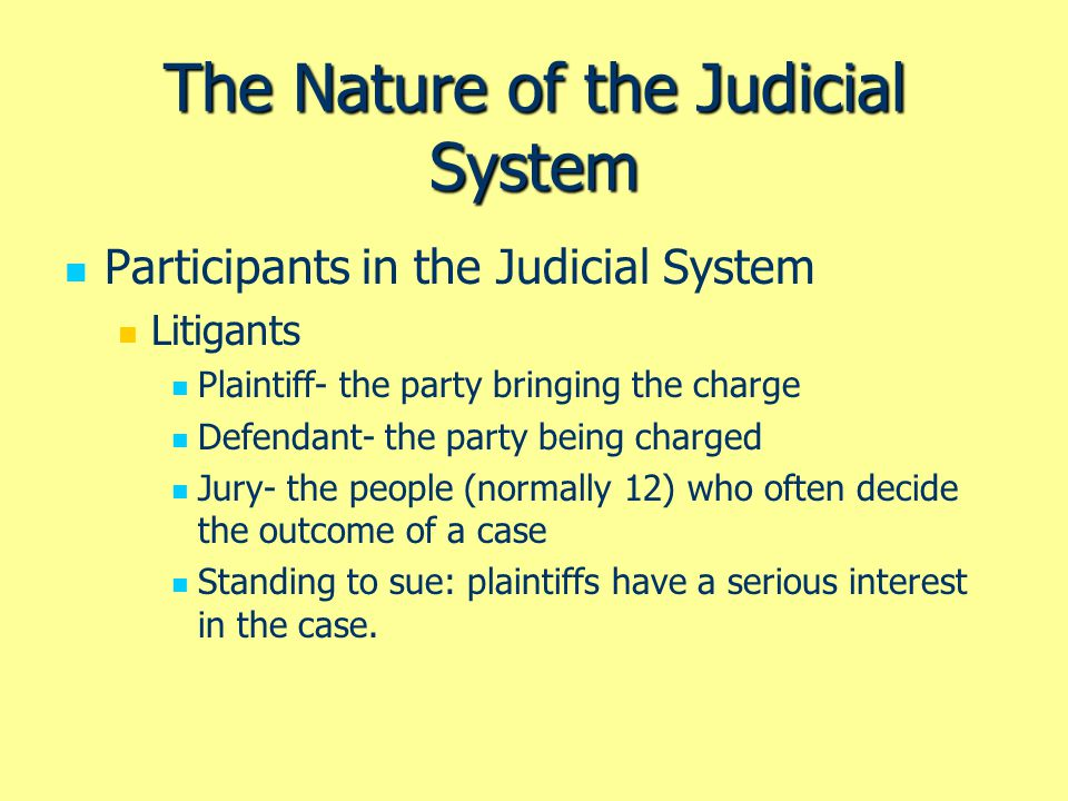 The Nature of the Judicial System Participants in the Judicial System Interests Groups.
