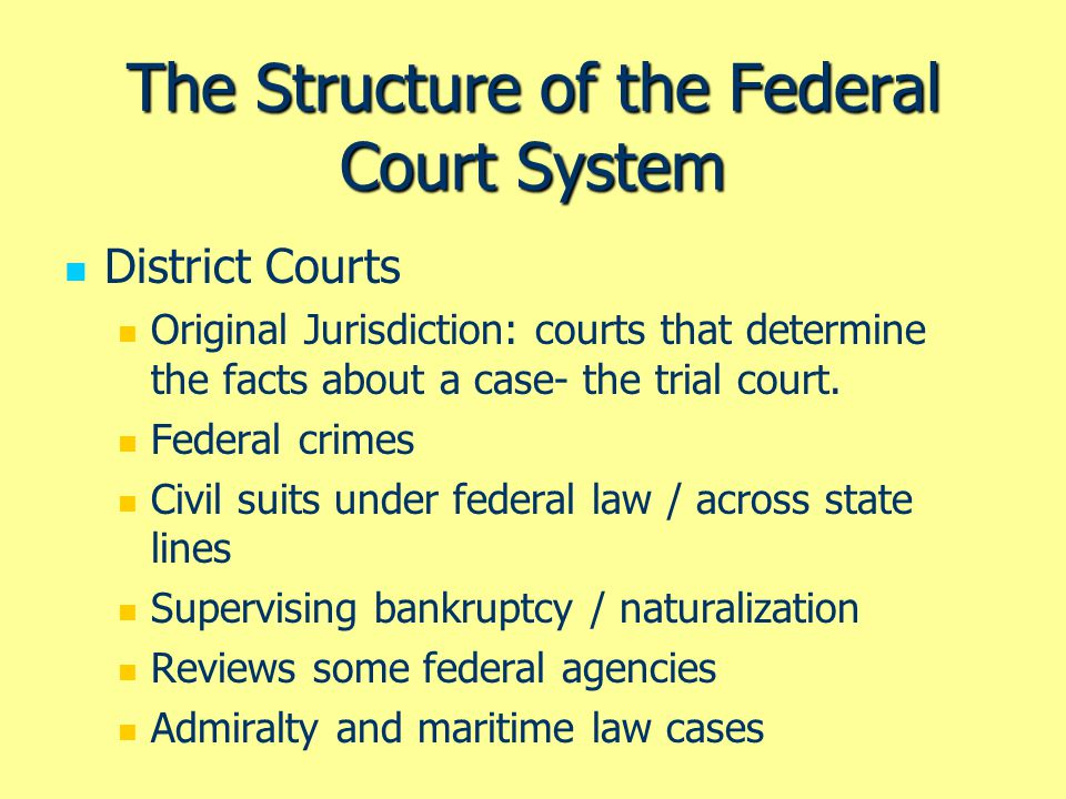 The Structure of the Federal Court System Courts of Appeal Appellate Jurisdiction: reviews the legal issues in cases brought from lower courts.