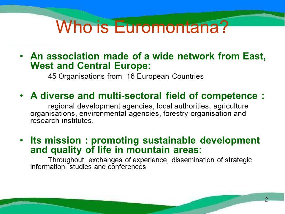 2 Who is Euromontana.