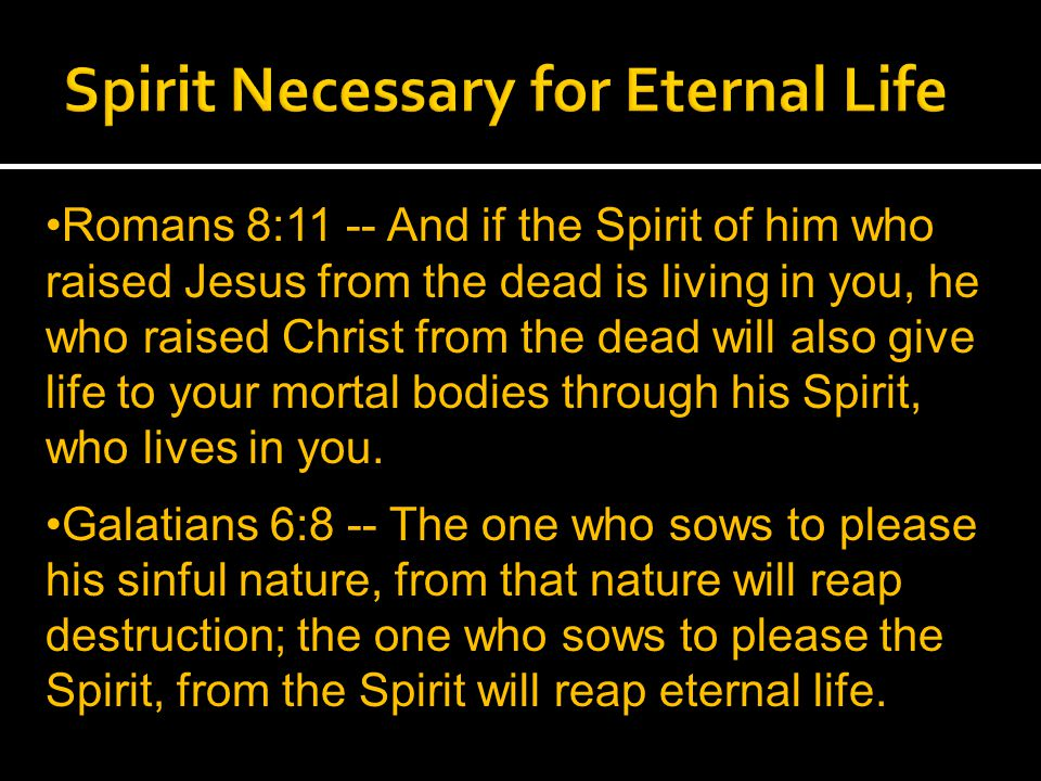 Romans 8:11 -- And if the Spirit of him who raised Jesus from the dead is living in you, he who raised Christ from the dead will also give life to your mortal bodies through his Spirit, who lives in you.