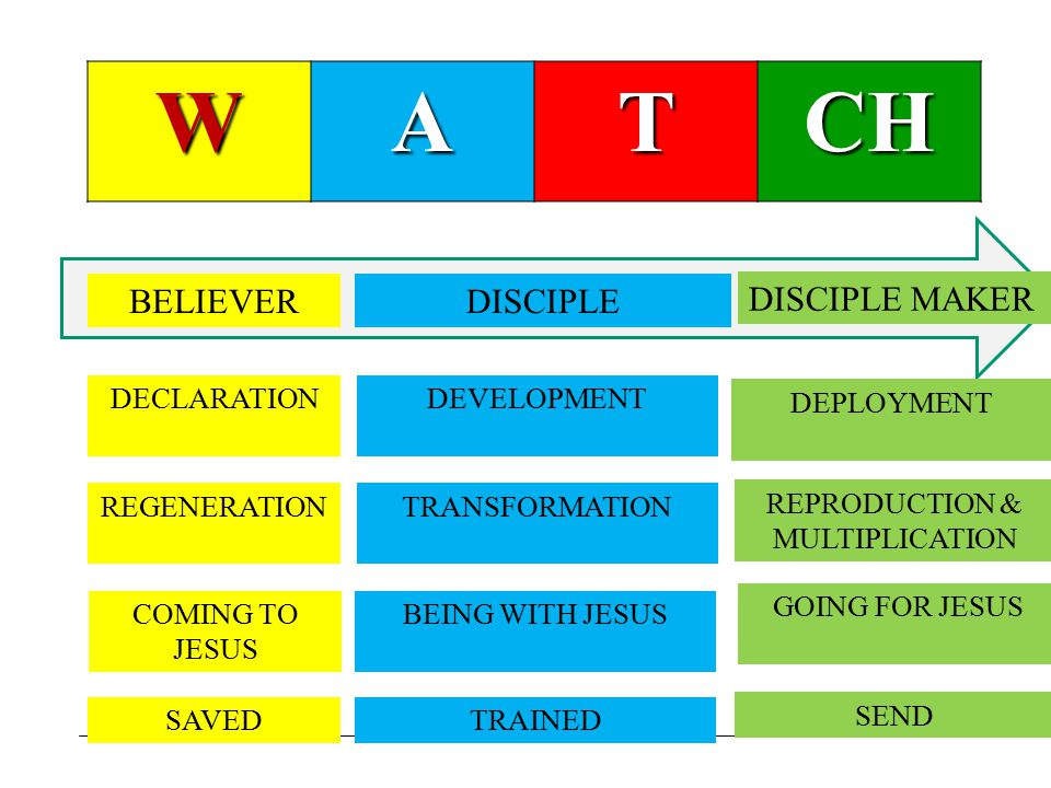 WATCH BELIEVERDISCIPLE DISCIPLE MAKER DECLARATIONDEVELOPMENT DEPLOYMENT REGENERATIONTRANSFORMATION REPRODUCTION & MULTIPLICATION COMING TO JESUS BEING WITH JESUS GOING FOR JESUS SAVEDTRAINED SEND
