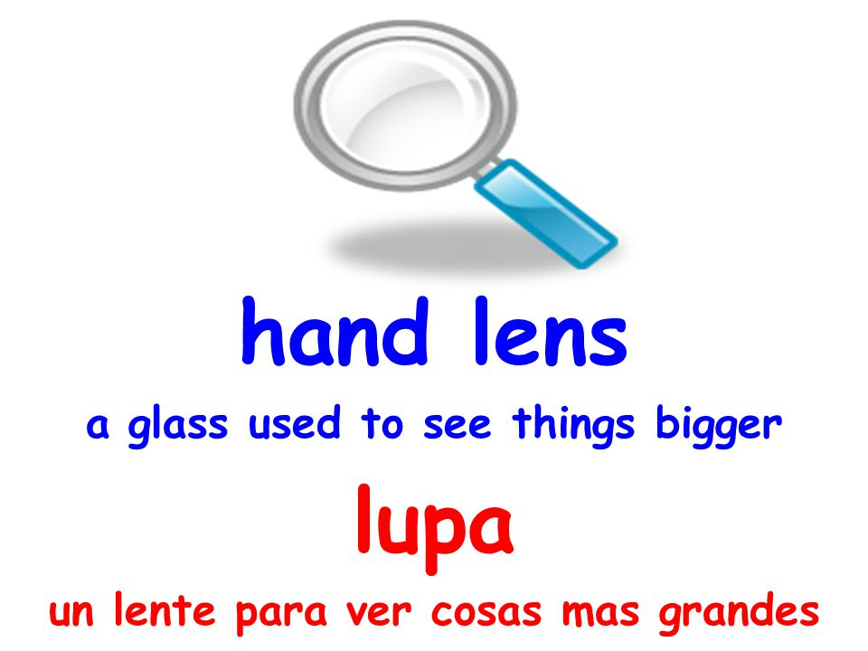 hand lens a glass used to see things bigger lupa un lente para ver cosas mas grandes