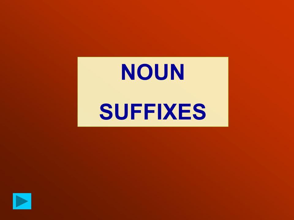 NOUN SUFFIXES
