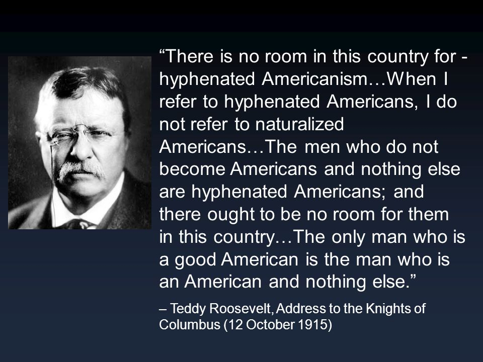 """There is no room in this country for - hyphenated Americanism…When I refer to hyphenated Americans, I do not refer to naturalized Americans…The men w"