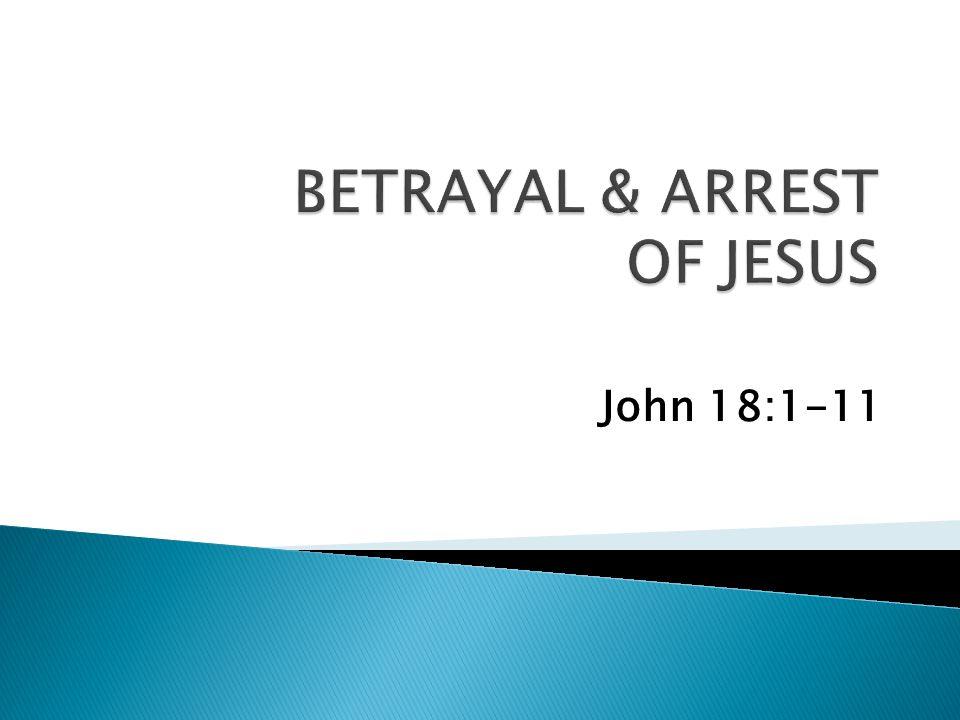 John 18:1-11