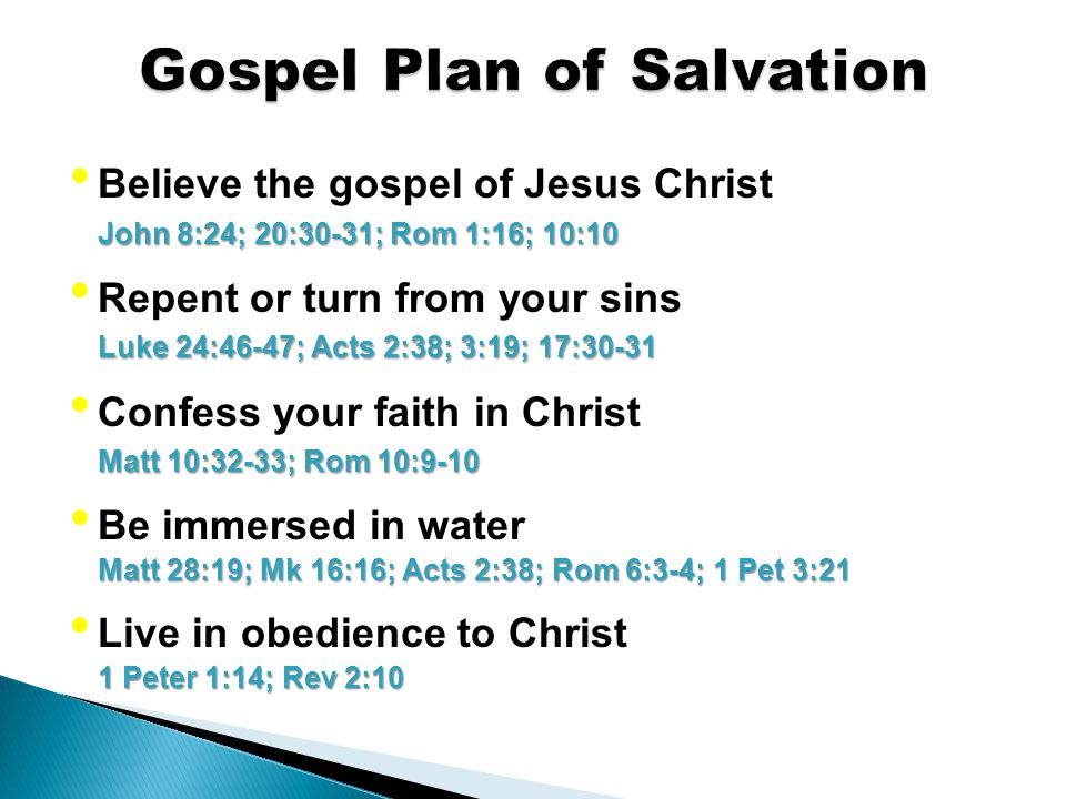 Believe the gospel of Jesus Christ John 8:24; 20:30-31; Rom 1:16; 10:10 Repent or turn from your sins Luke 24:46-47; Acts 2:38; 3:19; 17:30-31 Confess your faith in Christ Matt 10:32-33; Rom 10:9-10 Be immersed in water Matt 28:19; Mk 16:16; Acts 2:38; Rom 6:3-4; 1 Pet 3:21 Live in obedience to Christ 1 Peter 1:14; Rev 2:10