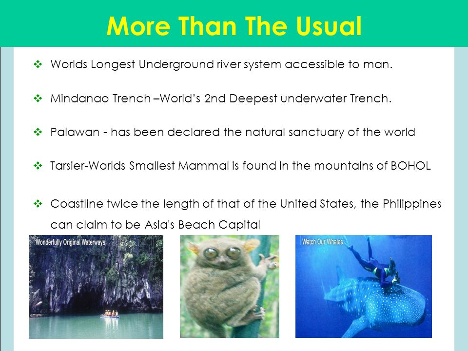 More Than The Usual  Worlds Longest Underground river system accessible to man.