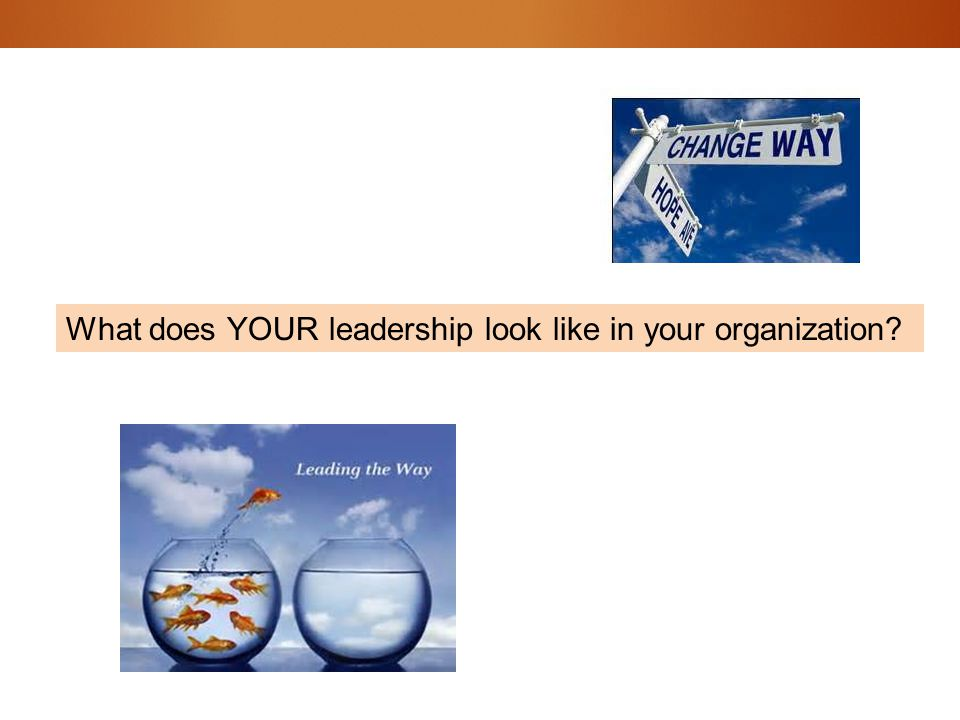 What does YOUR leadership look like in your organization