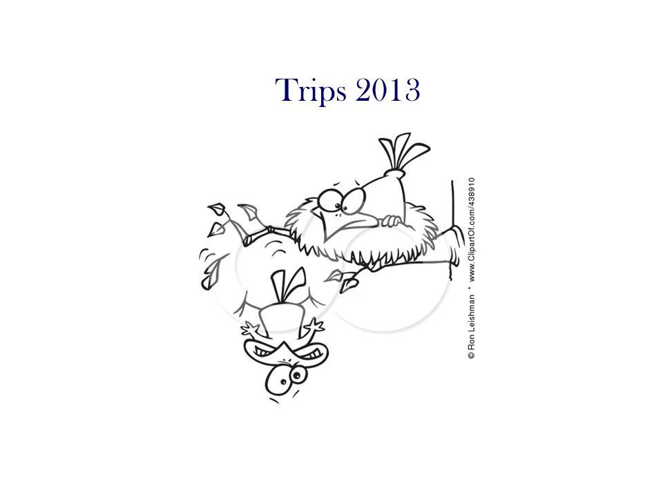 Trips 2013
