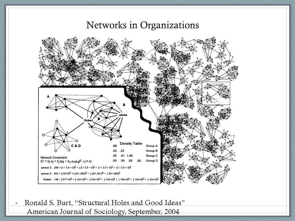 Networks in Organizations -Ronald S.
