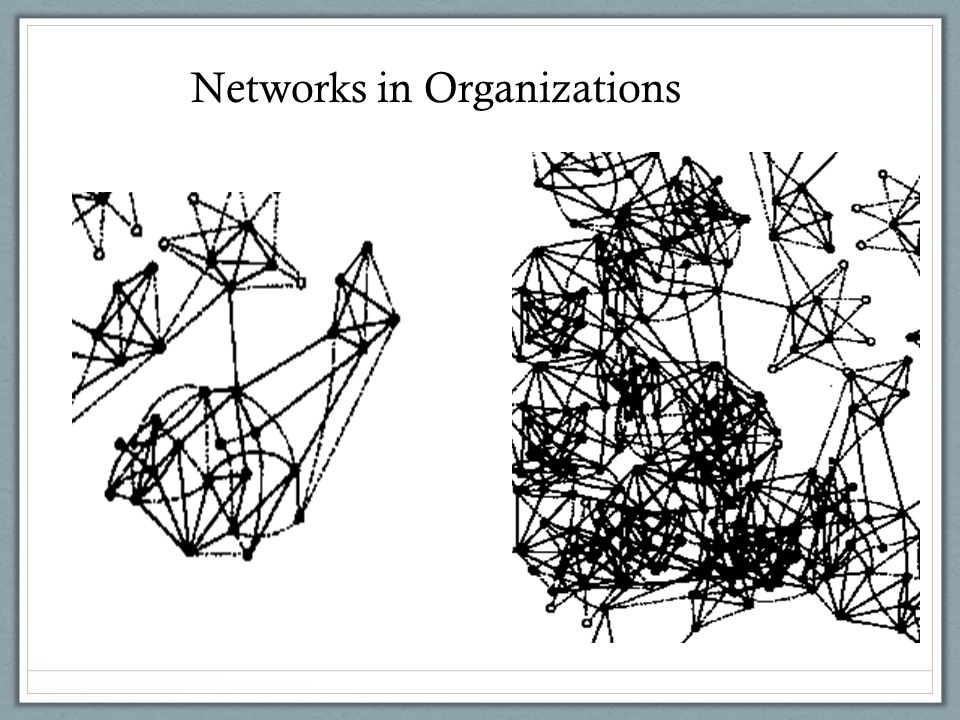 Networks in Organizations