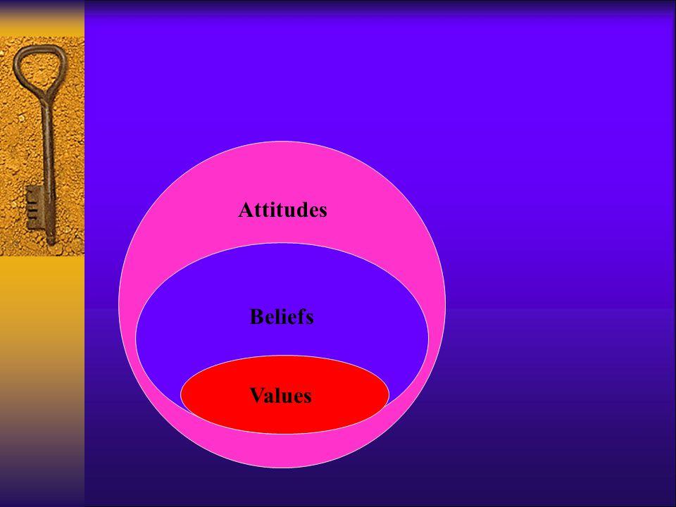 Values Beliefs Attitudes