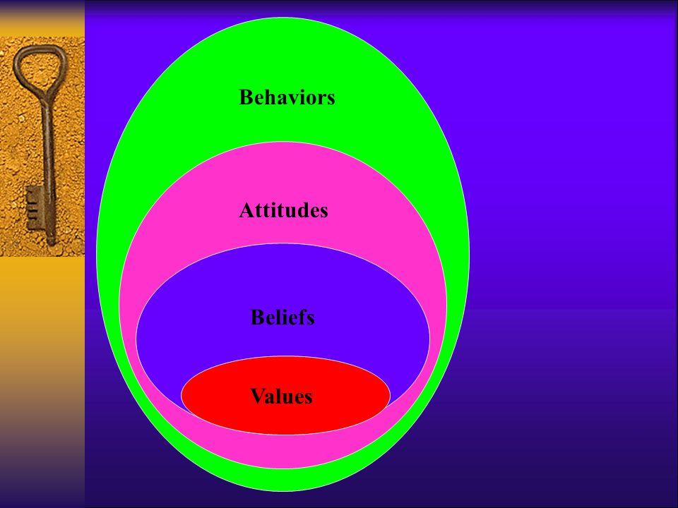 Values Beliefs Attitudes Behaviors
