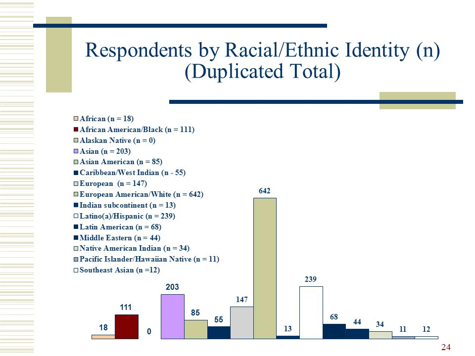 Respondents by Racial/Ethnic Identity (n) (Duplicated Total) 24