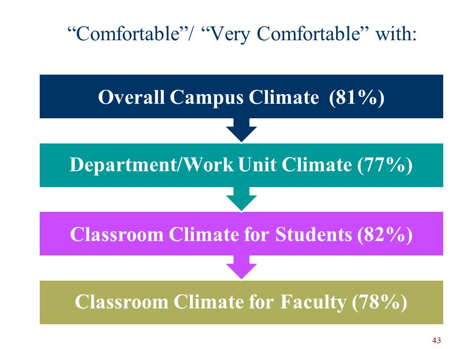 Comfortable / Very Comfortable with: Classroom Climate for Faculty (78%) Classroom Climate for Students (82%) Department/Work Unit Climate (77%) Overall Campus Climate (81%) 43
