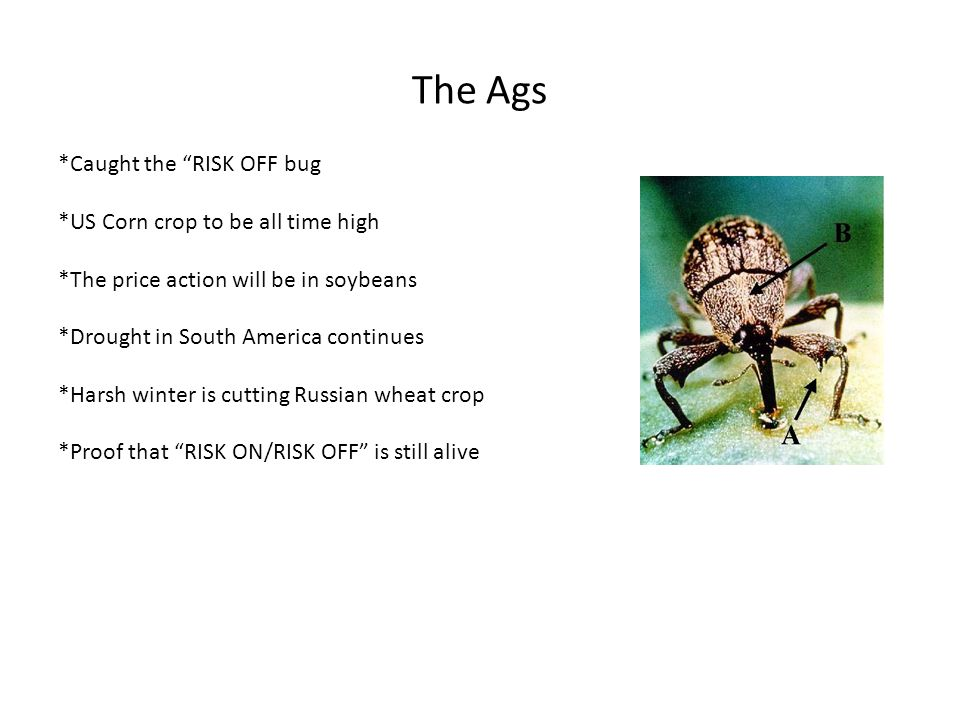 The Ags *Caught the RISK OFF bug *US Corn crop to be all time high *The price action will be in soybeans *Drought in South America continues *Harsh winter is cutting Russian wheat crop *Proof that RISK ON/RISK OFF is still alive