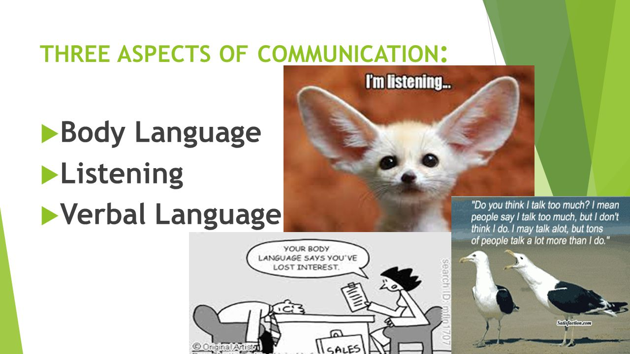 THREE ASPECTS OF COMMUNICATION :  Body Language  Listening  Verbal Language