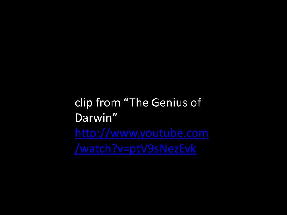 clip from The Genius of Darwin http://www.youtube.com /watch v=ptV9sNezEvk http://www.youtube.com /watch v=ptV9sNezEvk