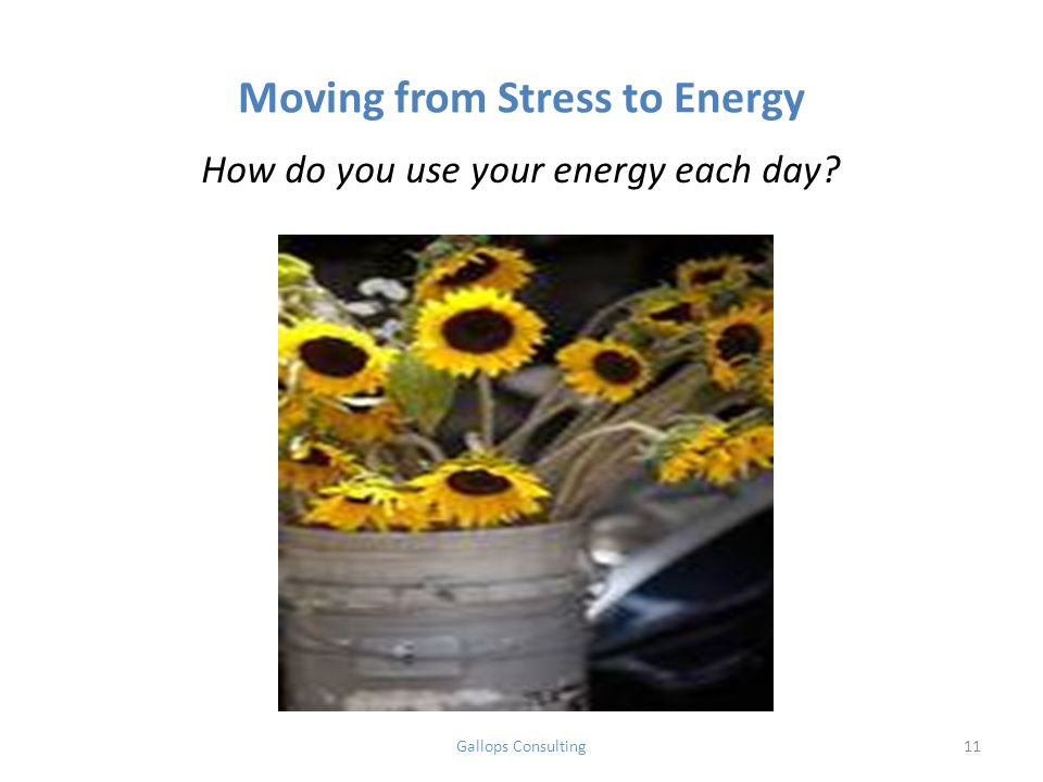 Moving from Stress to Energy How do you use your energy each day Gallops Consulting11