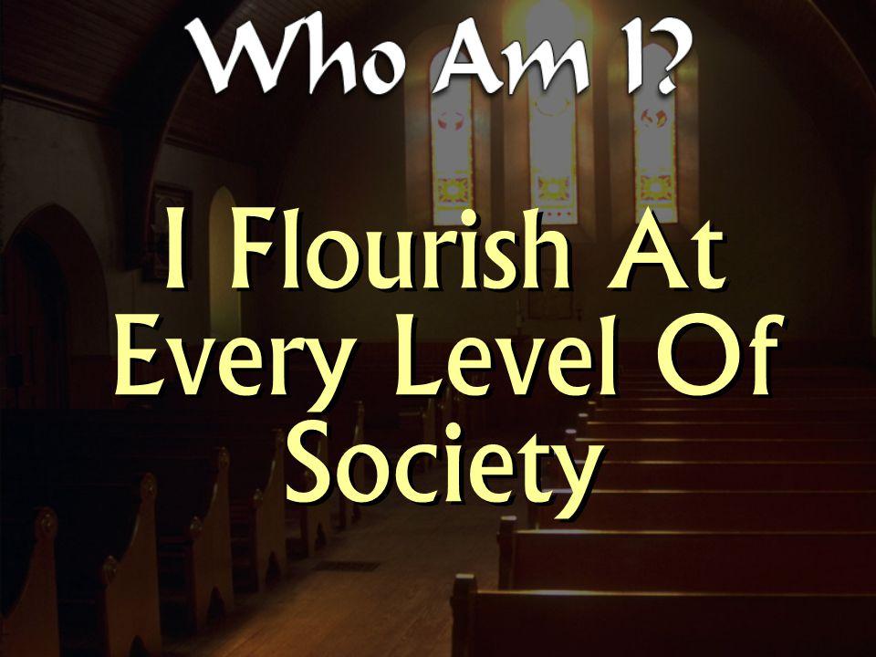 I Flourish At Every Level Of Society