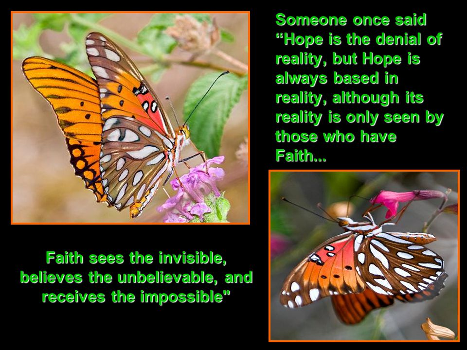 Someone once said Hope is the denial of reality, but Hope is always based in reality, although its reality is only seen by those who have Faith...
