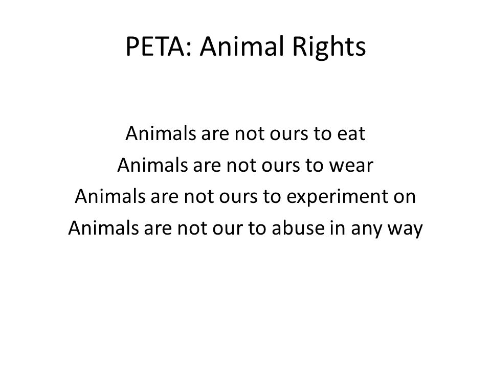 PETA: Animal Rights Animals are not ours to eat Animals are not ours to wear Animals are not ours to experiment on Animals are not our to abuse in any way