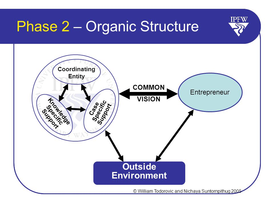 Phase 2 – Organic Structure Entrepreneur COMMON VISION Outside Environment Coordinating Entity Knowledge Specific Support Case Specific Support © William Todorovic and Nichaya Suntornpithug 2005