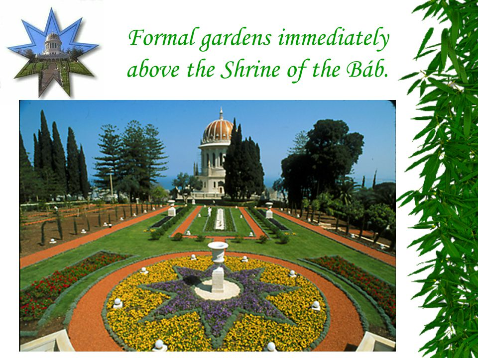 Formal gardens immediately above the Shrine of the Báb.