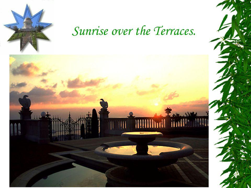 Sunrise over the Terraces.