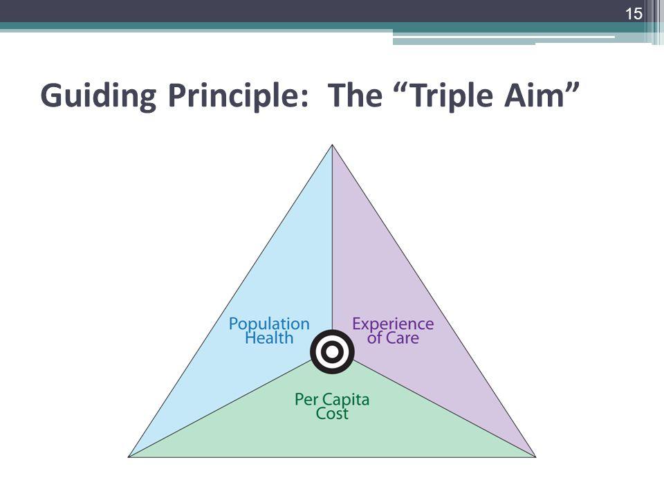 Guiding Principle: The Triple Aim 15