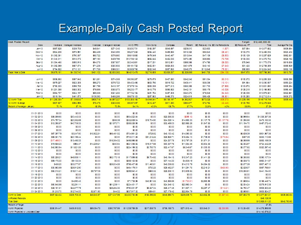 Example-Daily Cash Posted Report