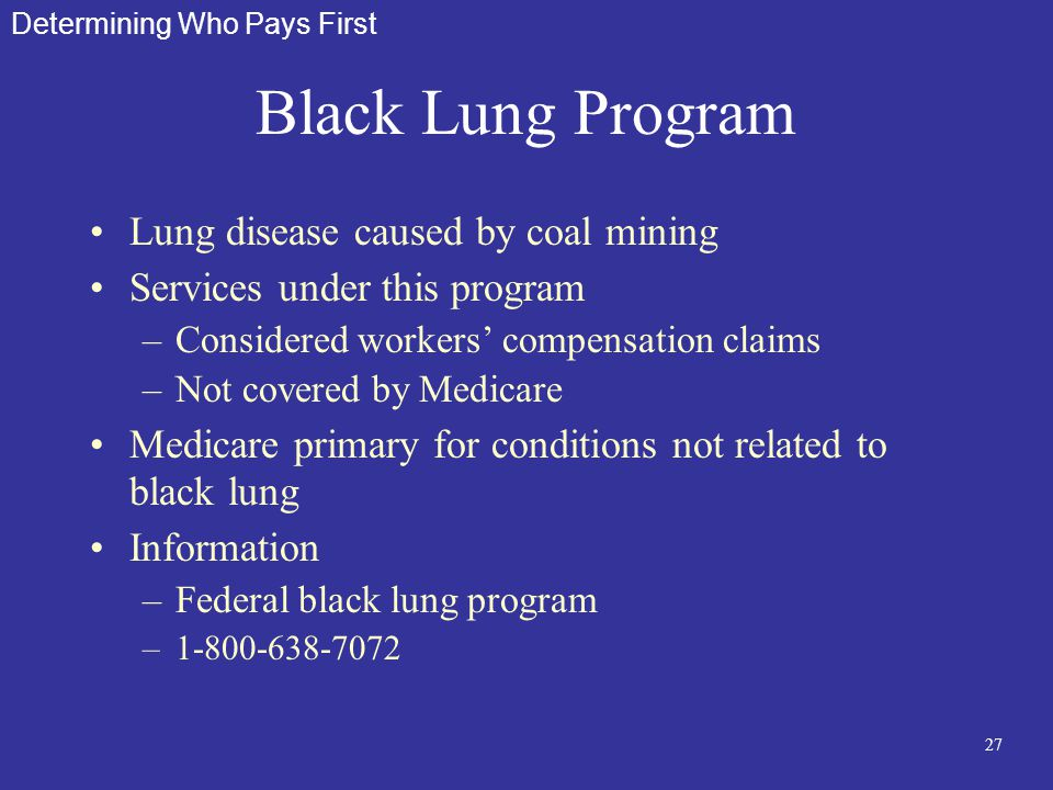 27 Black Lung Program Lung disease caused by coal mining Services under this program –Considered workers' compensation claims –Not covered by Medicare