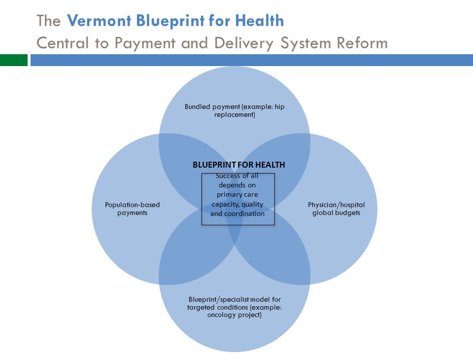 The Vermont Blueprint for Health Central to Payment and Delivery System Reform Success of all depends on primary care capacity, quality and coordination BLUEPRINT FOR HEALTH