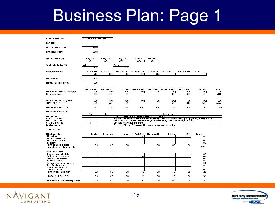 15 Business Plan: Page 1