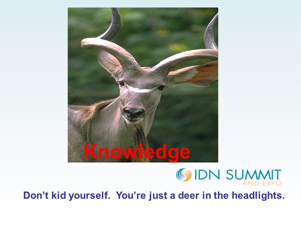 Don't kid yourself. You're just a deer in the headlights.. Knowledge