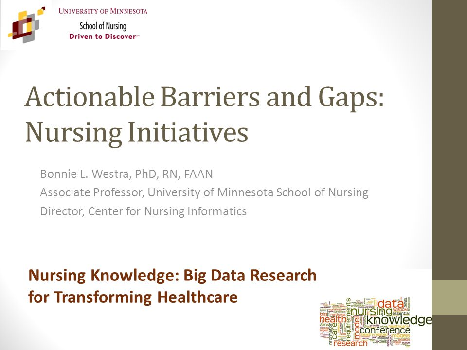 Actionable Barriers and Gaps: Nursing Initiatives Bonnie L.