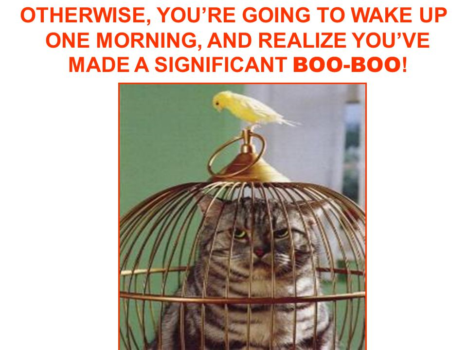 OTHERWISE, YOU'RE GOING TO WAKE UP ONE MORNING, AND REALIZE YOU'VE MADE A SIGNIFICANT BOO-BOO !